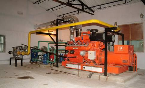 Gas Engine Gen-SET(Gauscor, S.A., Spain)